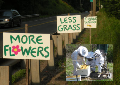 Road signs for Bees